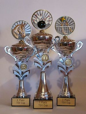 3er-Serie große Silber-Henkelpokale mit Gravur (für 20 verschiedene Sportarten)