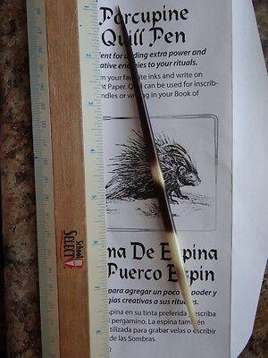 Porcupine Quill Pen 6-7