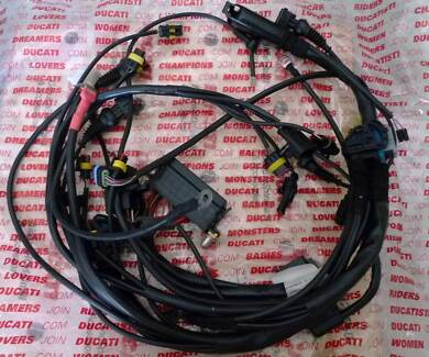 Ducati Super Sport 1000DS Main Wiring Harness