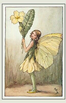 Flower Fairies Vintage Image 5 note cards The Primrose Fairy A6 folded blank