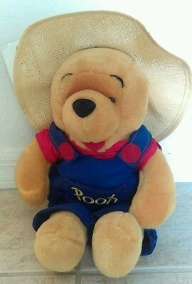 """WINNIE THE POOH Fruitstand Pooh 13"""" Plush Straw Hat and Overalls"""