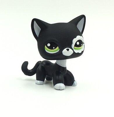 Littlest Pet Shop black cat Short Hair White Flower Patch Kitty LPS #2249 toys](Black Kitty)