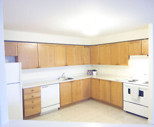 Spacious and Bright 1 bedroom in Beautiful Clayton Park West!