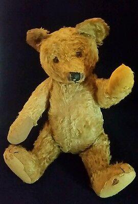 Antique Steiff Teddy Bear 18