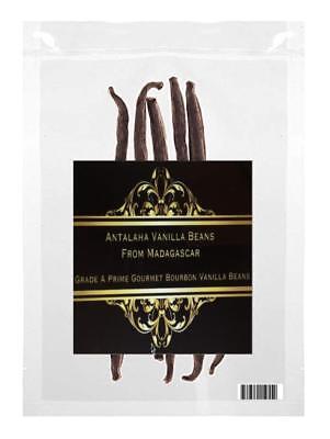 Gourmet Vanilla Beans Grade A Madagascar Organic Bourbon Vanilla Bean -