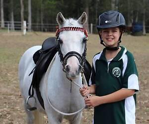Mum's Dream Pony. Bridgeman Downs Brisbane North East Preview
