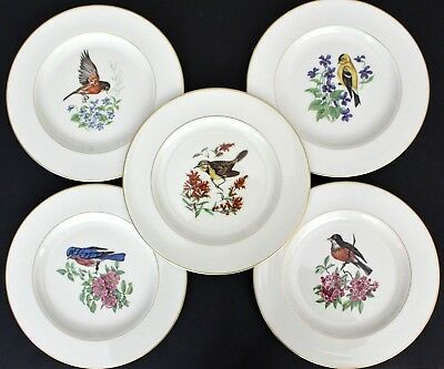 """Pickard China 5 PLATES Luncheon 9"""" BIRDS FLOWERS Ivory Gold Trim Set Five"""