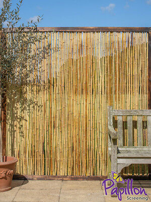 Bamboo Cane Framed Fence Panel 6ft x 6ft Garden Screening Fencing Wooden Wood