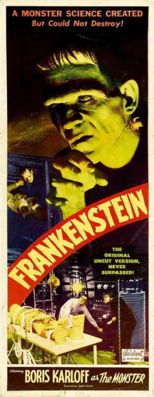 FRANKENSTEIN Movie POSTER 14x36 Insert  Boris Karloff Colin Clive Mae Clarke