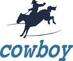 cowboy hat stretcher