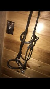 English Bridle with bit