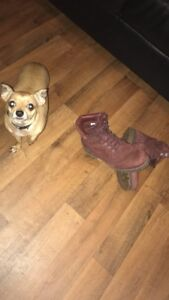 Maroon Timberlands size (9.5)