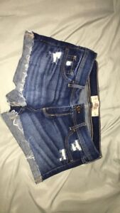 Hollister Low-Rise Ripped Jean Shorts