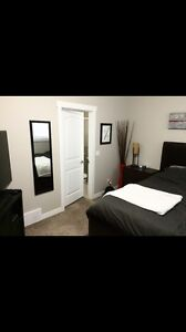 Large master style bedroom for rent W private ensuite bathroom