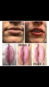 Lip Tattooing - Cosmetic Tattooing $250 Miranda Sutherland Area Preview