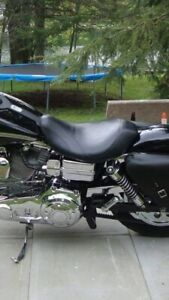 Solo dyna seat