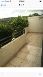 Room for rent Manly Vale Manly Area Preview