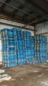 New pallets (1/2 price)