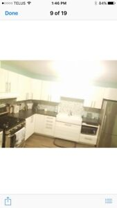 1 Bedroom appartment in the country available January 1st