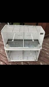 Bird cage for 30$ each 5146853129
