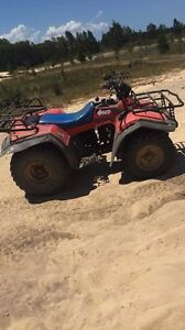 Suzuki LT250 QUAD RUNNER 4x4 Newcastle Newcastle Area Preview