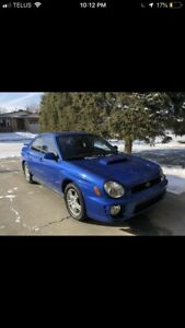 Looking for a cheaper wrx for sale