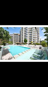 Roomshare Surfers Paradise (Female only) Surfers Paradise Gold Coast City Preview