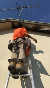 Roof repairs / Carpentry / handyman (Free Quotes)