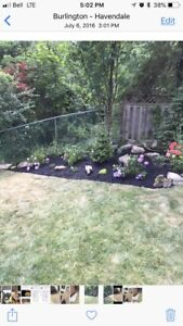 Lawn Care and Landscape Work