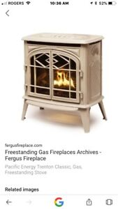 In search of a DIRECT VENT GAS FIREPLACE