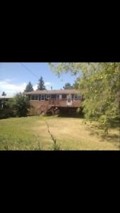 3 bedroom pet friendly country living!