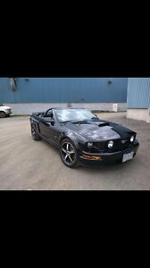 08 mustang mint condition