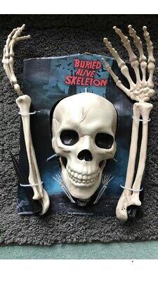 Lawn Skeleton Halloween Skelton Bones Halloween Lights Party - Halloween Skelton
