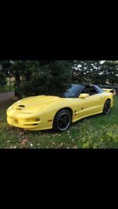 02 Pontiac trans am collectors edition