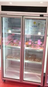 Freezer - 2 door Scope Brand Strathfield Strathfield Area Preview