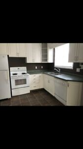 Great Avalon location, 3 bedroom main floor of house for rent.