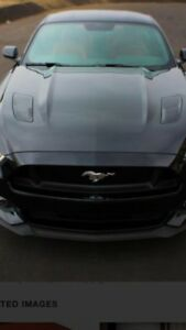 2015 Ford Mustang gt hood
