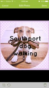 Dog Sitter/Walker ($5 an hour) Southport Gold Coast City Preview