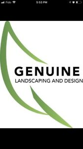 Genuine Landscape and Interlock