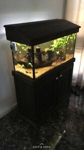 3ft fish tank Roxburgh Park Hume Area Preview