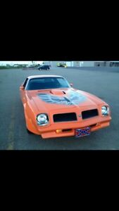 1976 Pontiac Firebird Trans-Am