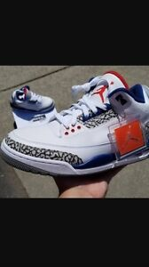 Jordan tru blue 3s