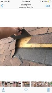 Roof Inspection/Secure/Repair $199 and up