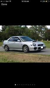 Looking for NO rust, low mileage 2002-2006 WRX