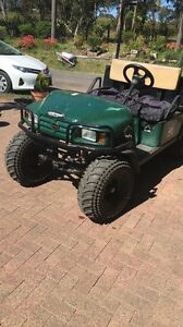 EZGO OFF-ROAD BUGGY Tennyson Point Ryde Area Preview