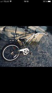 Trail a bike ou girafe pour vélo