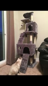 In search of gently used clean cat tree