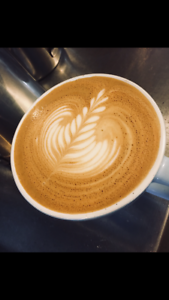 BARISTA, all rounder
