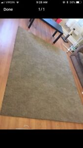 Beige area rug need gone !