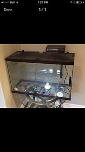 30 Gal fish tank, cleaner, and rock for decoration